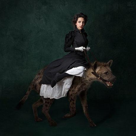 danny cohen hyena