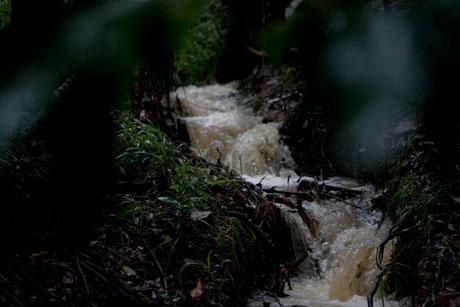 kim-guthrie-running-water