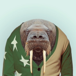 zoo-portraits-5