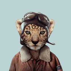 zoo-portraits-feature-thumbnail